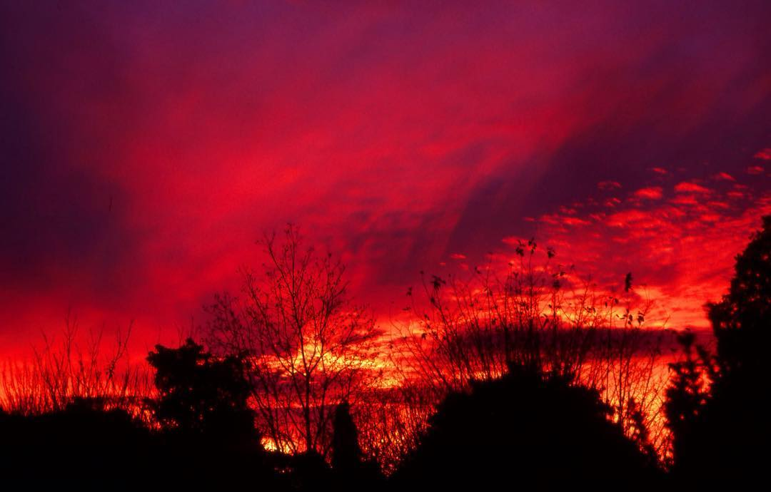 A beautiful, red Dundee  Sunset