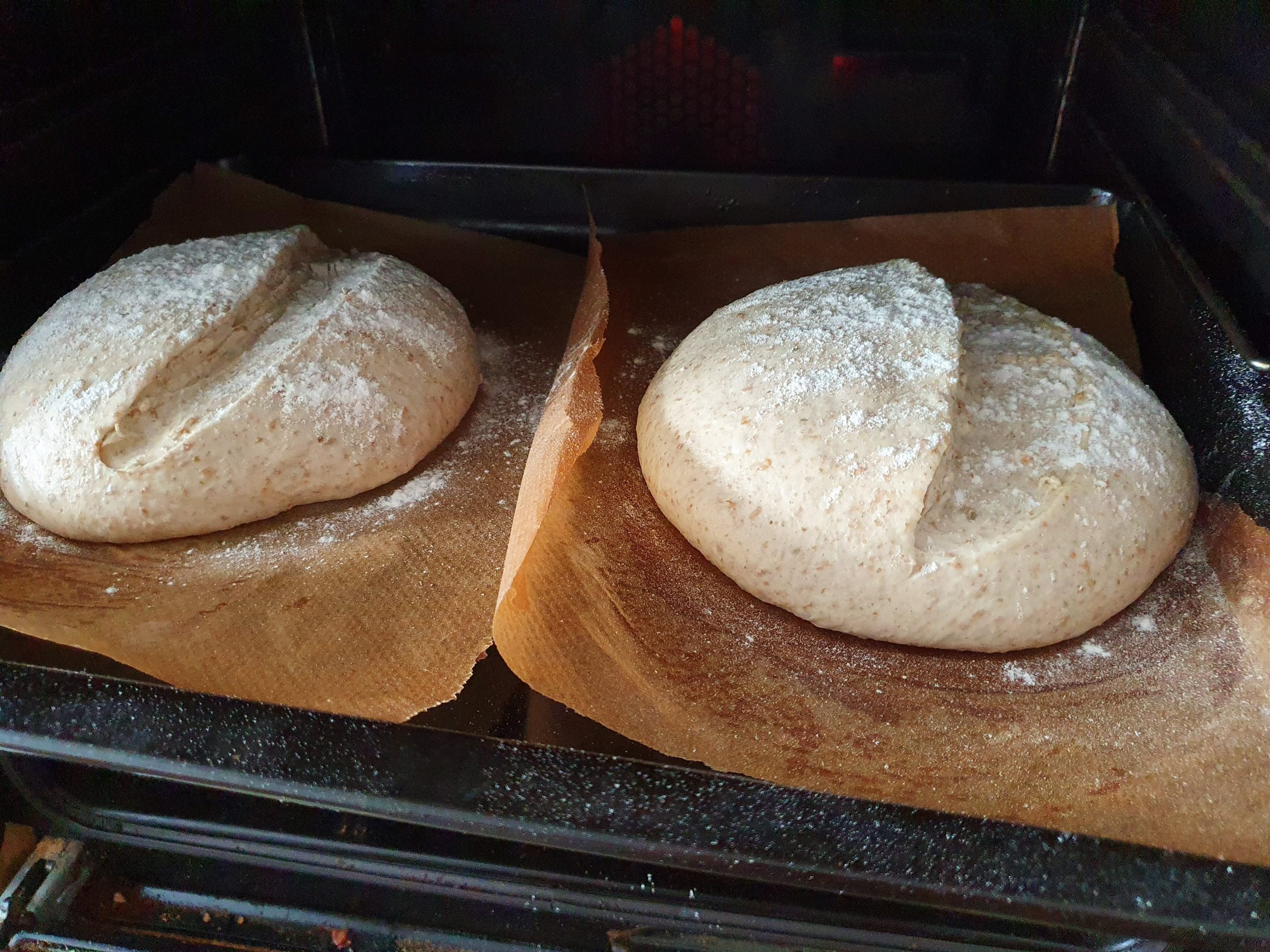 2 Loaves Scored and ready to bake