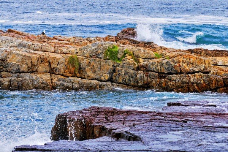 Just Rocks and Sea at hermanus