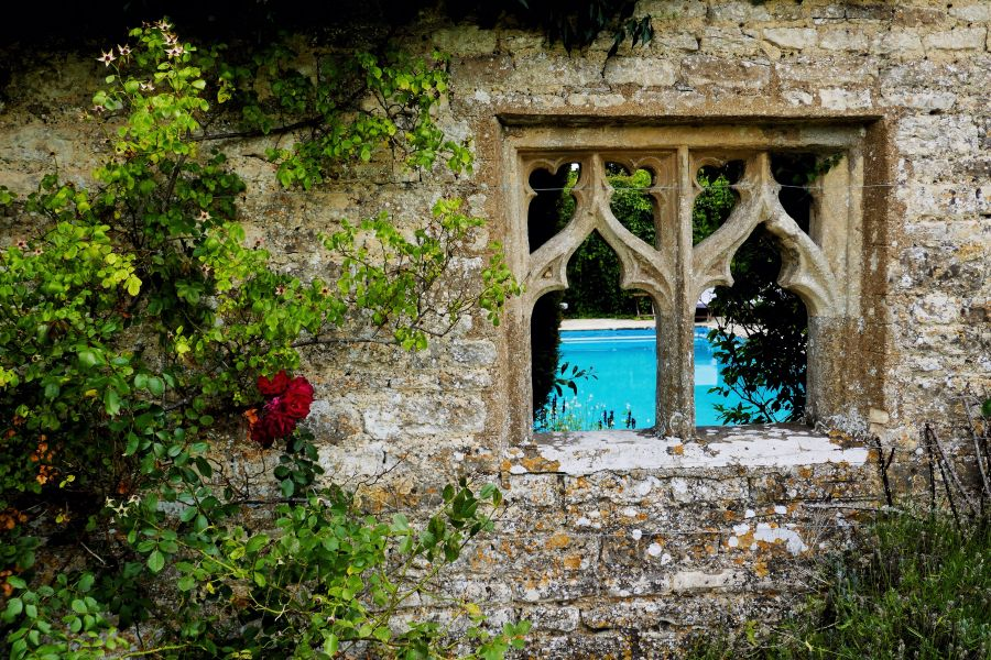 Old Brick, A Pool and a Red Flower