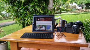 Blogging in the garden