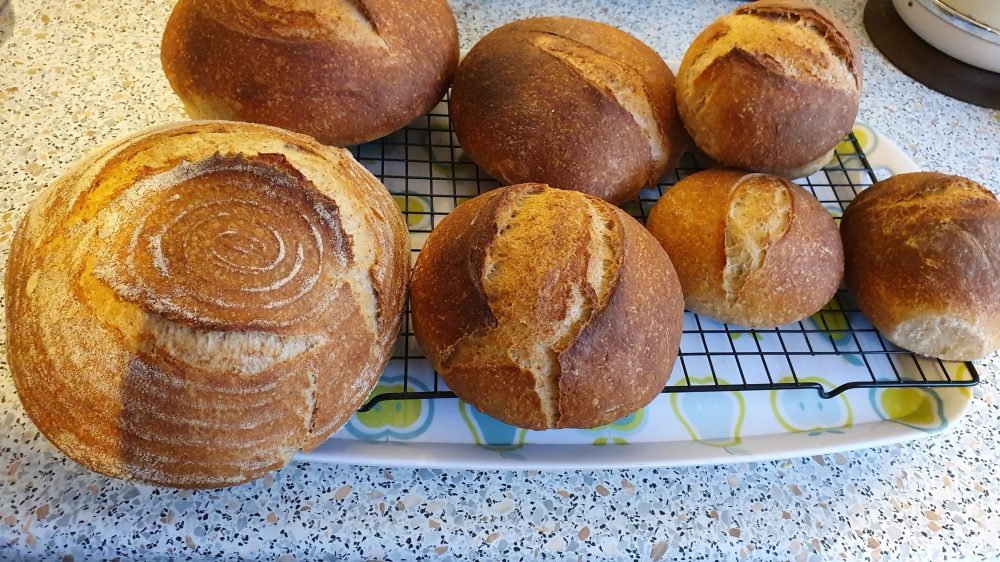 Simple sourdough baked in various sizes
